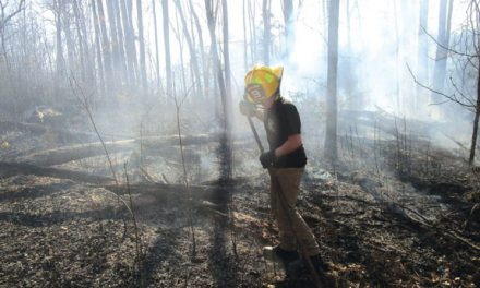 Nice Stop at Brush Fire