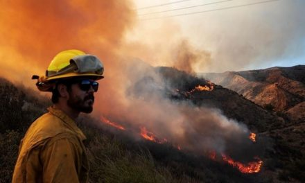 FIRE IN CASTAIC AND VALENCIA (CA) QUICKLY SPREADS TO 650 ACRES TRIGGERING MANDATORY EVACUATION ORDERS