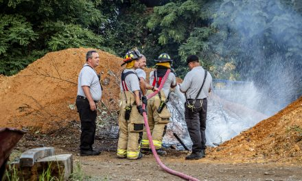 Firefighters respond to illegal burn in Greenville (TN)